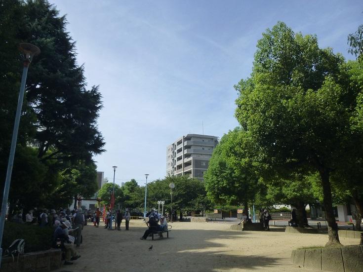 11.P1120087.jpg