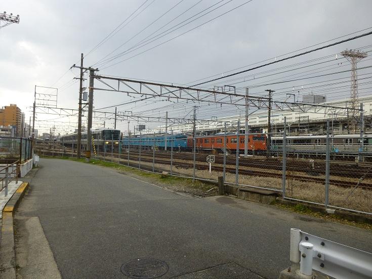 20.P1050272.JPG