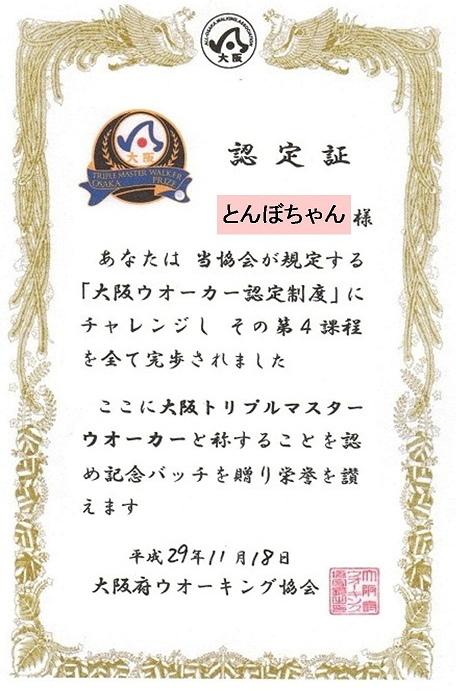 b1. (1).JPG